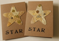 Embroidered Star cards